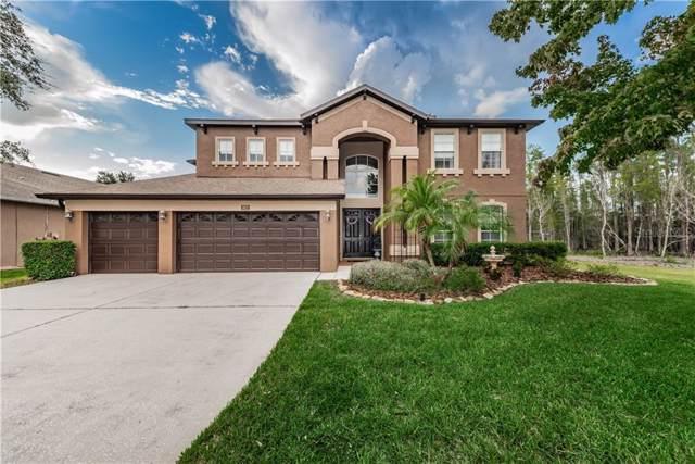 3627 Barnweill Street, Land O Lakes, FL 34638 (MLS #U8052967) :: Team Bohannon Keller Williams, Tampa Properties