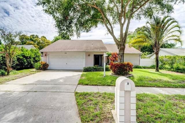 342 Jean Street, Palm Harbor, FL 34683 (MLS #U8052968) :: Bridge Realty Group