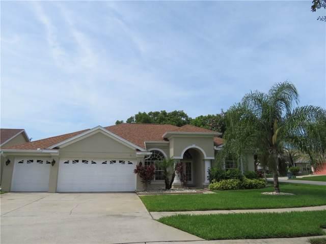 1200 Jasmine Lake Drive, Tarpon Springs, FL 34689 (MLS #U8052983) :: Lovitch Realty Group, LLC