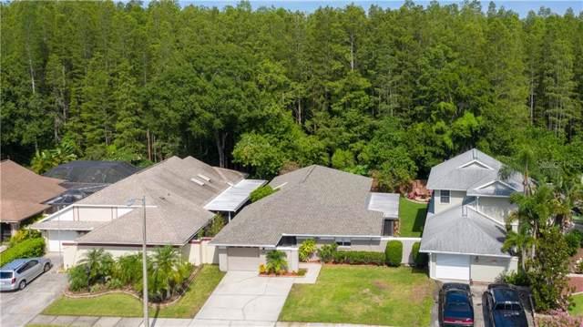 5941 Birchwood Drive, Tampa, FL 33625 (MLS #U8053072) :: KELLER WILLIAMS ELITE PARTNERS IV REALTY