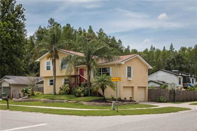 1240 Eastwood Dr, Lutz, FL 33549 (MLS #U8053099) :: Bridge Realty Group