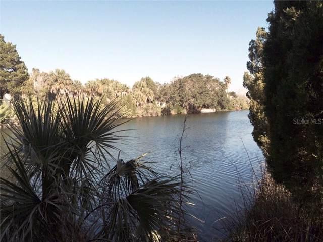 3233 Rose Arbor Drive, Hernando Beach, FL 34607 (MLS #U8053387) :: Dalton Wade Real Estate Group