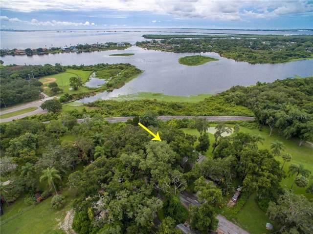 1200 Fern Terrace Drive, Safety Harbor, FL 34695 (MLS #U8053467) :: Team Bohannon Keller Williams, Tampa Properties