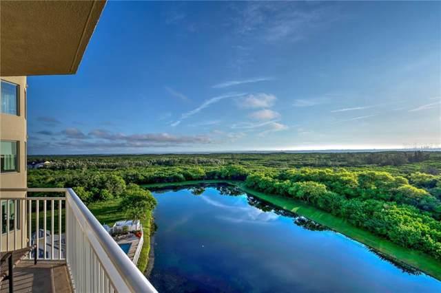 10851 Mangrove Cay Lane NE #813, St Petersburg, FL 33716 (MLS #U8053948) :: Griffin Group