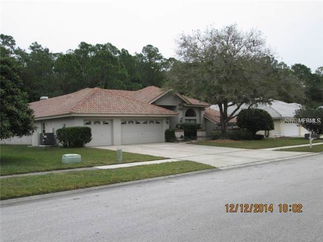 3981 Wellington Parkway, Palm Harbor, FL 34685 (MLS #U8054549) :: Delgado Home Team at Keller Williams
