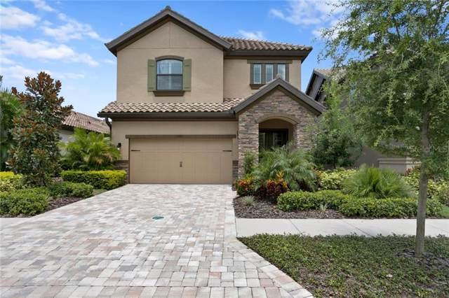 1381 Marinella Drive, Palm Harbor, FL 34683 (MLS #U8054564) :: Delgado Home Team at Keller Williams