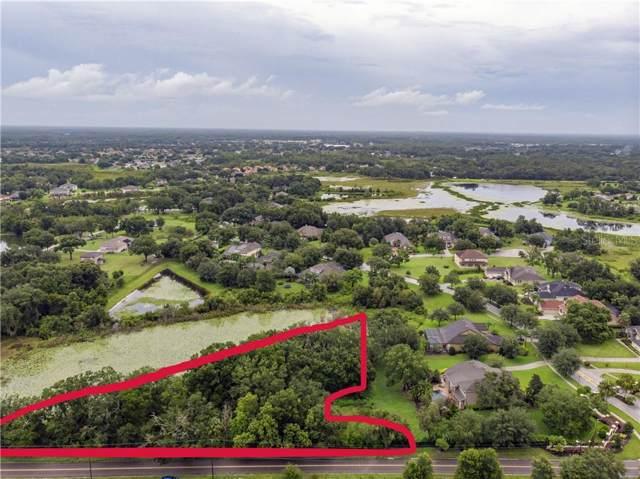 2202 Newberger Road, Lutz, FL 33549 (MLS #U8054724) :: Team Bohannon Keller Williams, Tampa Properties