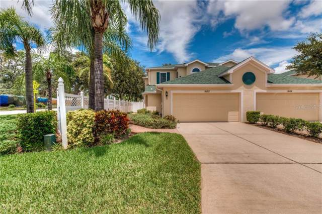 1602 Rachel Court, Clearwater, FL 33756 (MLS #U8054782) :: Medway Realty