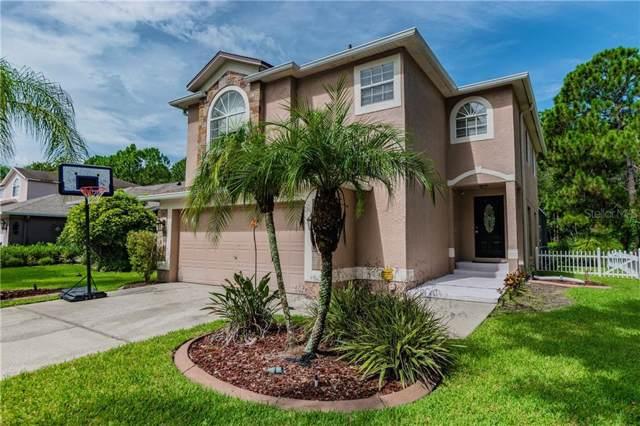 13109 Royal George Avenue, Odessa, FL 33556 (MLS #U8054928) :: Lovitch Realty Group, LLC