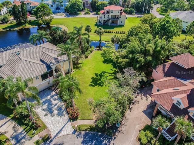 Sandpiper Pointe Court, Tarpon Springs, FL 34689 (MLS #U8055136) :: Burwell Real Estate
