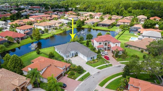 2618 Grand Lakeside Drive, Palm Harbor, FL 34684 (MLS #U8055140) :: Team Bohannon Keller Williams, Tampa Properties
