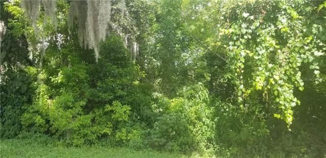 Rowan Road, New Port Richey, FL 34653 (MLS #U8055157) :: Team Turner
