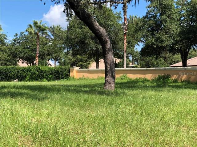 1323 Toscano Drive, Trinity, FL 34655 (MLS #U8055160) :: Griffin Group