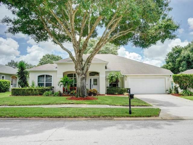 3672 Siena Lane, Palm Harbor, FL 34685 (MLS #U8055250) :: The Duncan Duo Team