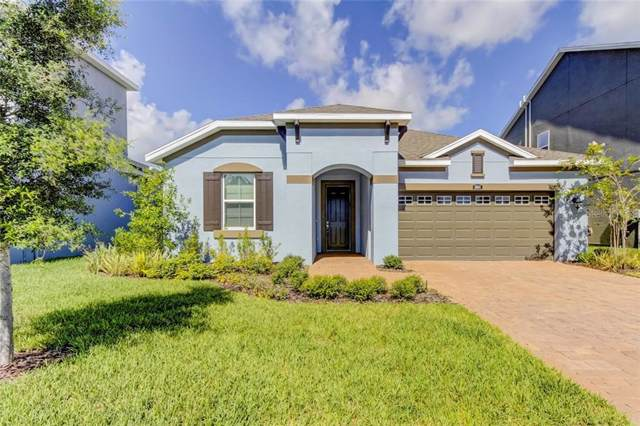 8004 Red Orchard Court, Tampa, FL 33635 (MLS #U8055261) :: The Duncan Duo Team