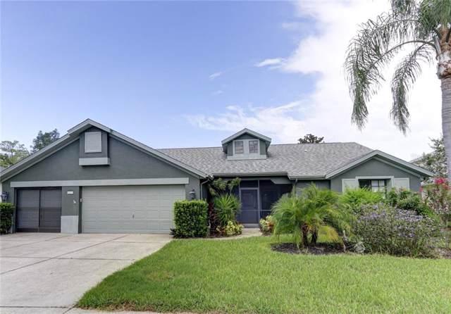 5637 Wellfield Rd, New Port Richey, FL 34655 (MLS #U8055440) :: Lovitch Realty Group, LLC