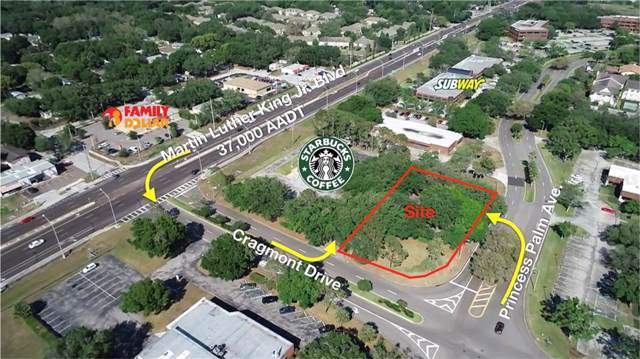 Address Not Published, Tampa, FL 33619 (MLS #U8055480) :: Team Bohannon Keller Williams, Tampa Properties
