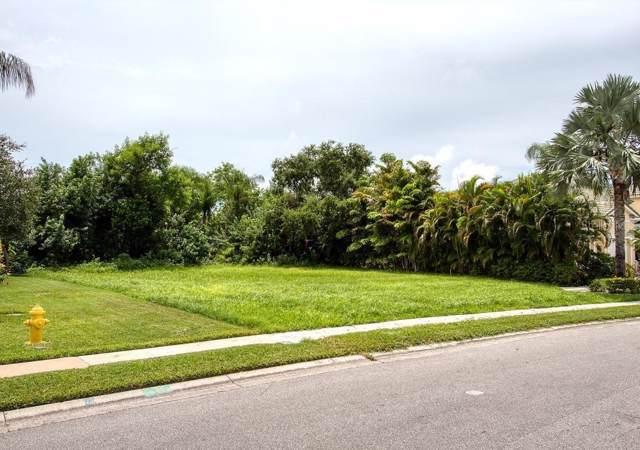 Pasadena Point Boulevard S, Gulfport, FL 33707 (MLS #U8055631) :: The Duncan Duo Team