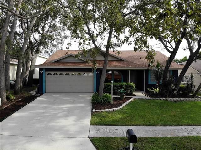 1126 Rolling Oaks Avenue, Tarpon Springs, FL 34689 (MLS #U8055633) :: Griffin Group