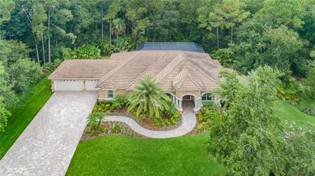 1862 E Lake Woodlands Parkway, Oldsmar, FL 34677 (MLS #U8055730) :: Lovitch Realty Group, LLC