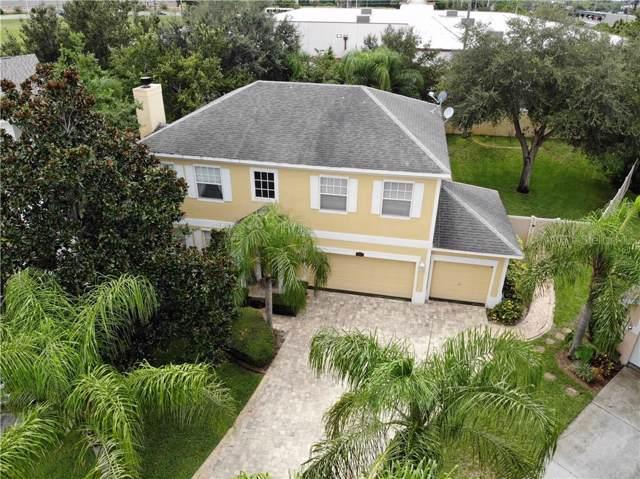 1007 Sawgrass Drive, Tarpon Springs, FL 34689 (MLS #U8055731) :: Rabell Realty Group