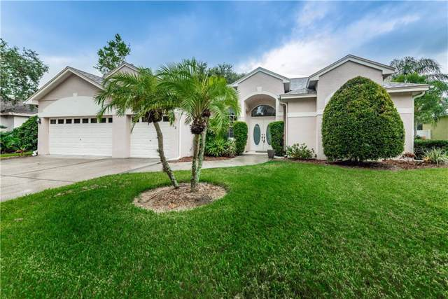 952 Oakview Road, Tarpon Springs, FL 34689 (MLS #U8055760) :: Rabell Realty Group