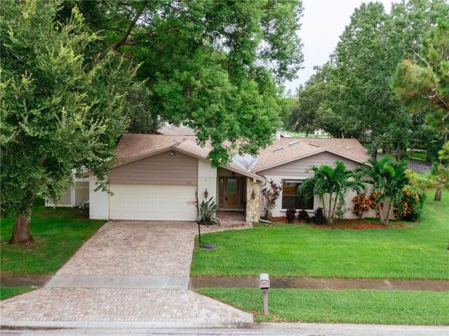 3005 Enisglen Drive, Palm Harbor, FL 34683 (MLS #U8055919) :: Cartwright Realty