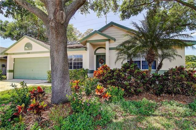 744 Stonehenge Way, Palm Harbor, FL 34683 (MLS #U8055925) :: The Duncan Duo Team