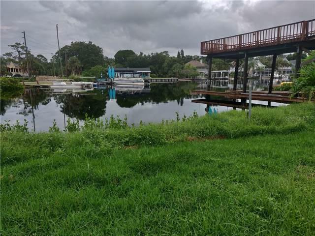 3 Venetian Court, Tarpon Springs, FL 34689 (MLS #U8055990) :: Rabell Realty Group