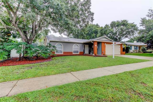 214 Lotus Drive, Safety Harbor, FL 34695 (MLS #U8056004) :: Bridge Realty Group