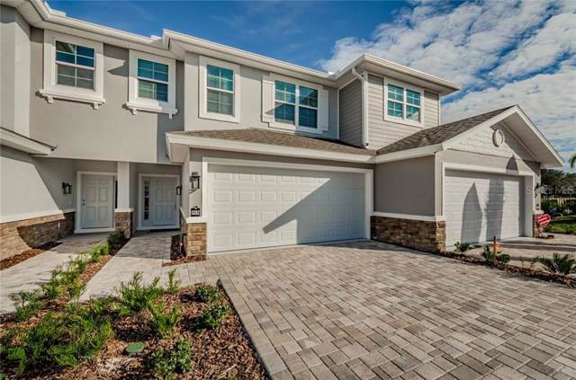 5353 Riverwalk Preserve Drive, New Port Richey, FL 34653 (MLS #U8056013) :: Griffin Group