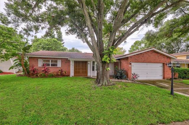 12906 Mia Circle, Largo, FL 33774 (MLS #U8056118) :: Andrew Cherry & Company
