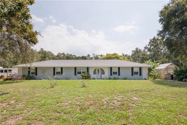 14128 Pigeon Road, Hudson, FL 34669 (MLS #U8056129) :: Cartwright Realty