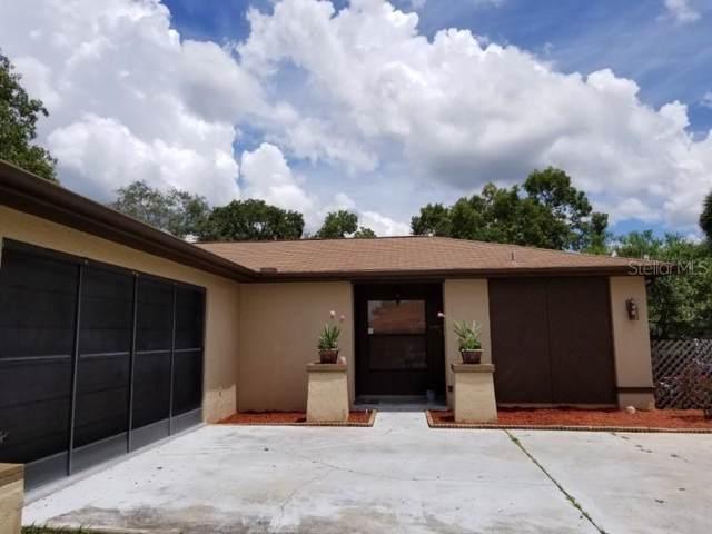 284 Dartmouth Avenue, Spring Hill, FL 34606 (MLS #U8056151) :: Dalton Wade Real Estate Group