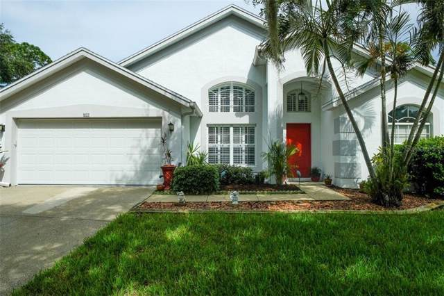 802 High Pines Court, Tarpon Springs, FL 34689 (MLS #U8056187) :: Team Pepka