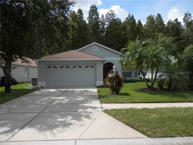 1115 Sweet Jasmine Drive, Trinity, FL 34655 (MLS #U8056218) :: Charles Rutenberg Realty