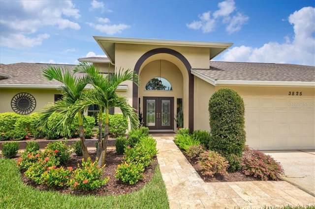 3825 Windber Boulevard, Palm Harbor, FL 34685 (MLS #U8056252) :: Cartwright Realty