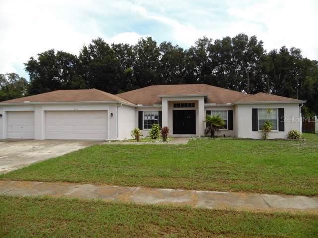 6734 Clair Shore Drive, Apollo Beach, FL 33572 (MLS #U8056383) :: Griffin Group