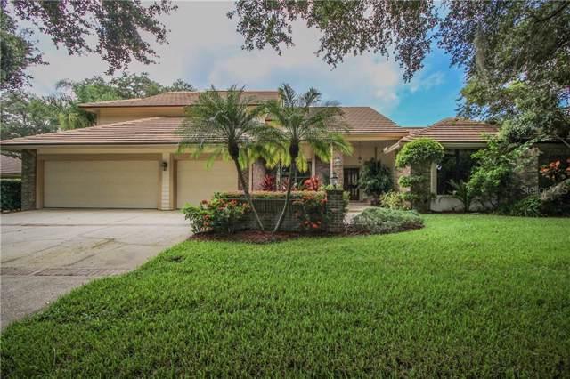 3468 Shoreline Circle, Palm Harbor, FL 34684 (MLS #U8056399) :: Cartwright Realty