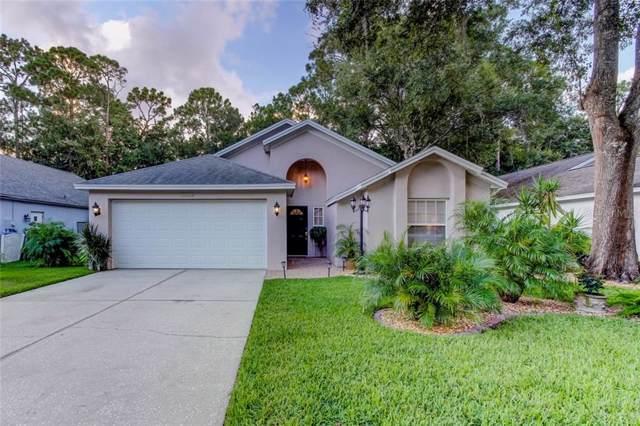 3373 Laurelwood Court, Tarpon Springs, FL 34688 (MLS #U8056416) :: Cartwright Realty