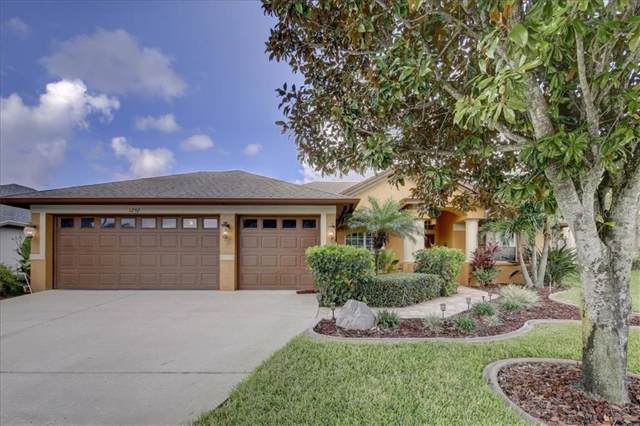1292 Blackrush Drive, Tarpon Springs, FL 34689 (MLS #U8056461) :: Cartwright Realty