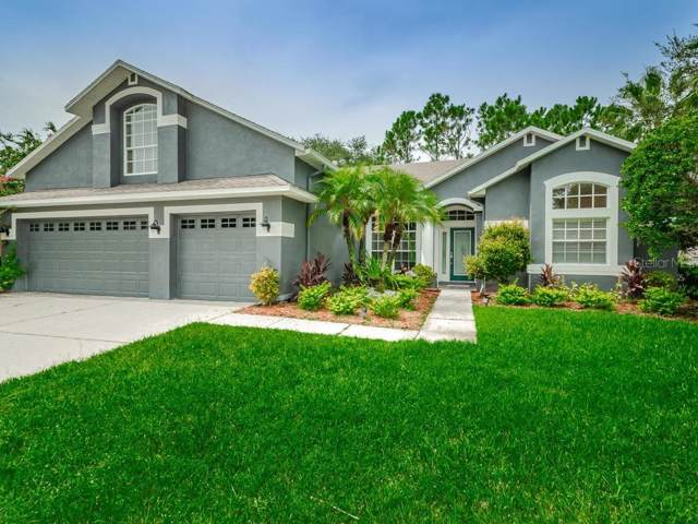 12512 Leatherleaf Drive, Tampa, FL 33626 (MLS #U8056527) :: Team 54