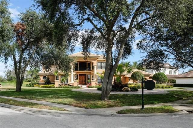 1205 Playmoor Drive, Palm Harbor, FL 34683 (MLS #U8056539) :: Cartwright Realty