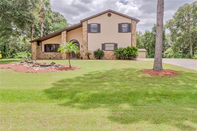 12512 Rawhide Drive, Tampa, FL 33626 (MLS #U8056587) :: Paolini Properties Group