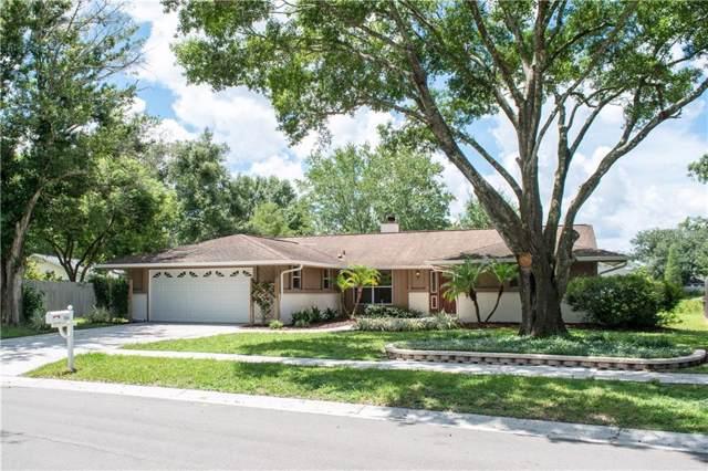15144 Willowdale Road, Tampa, FL 33625 (MLS #U8056590) :: Team 54