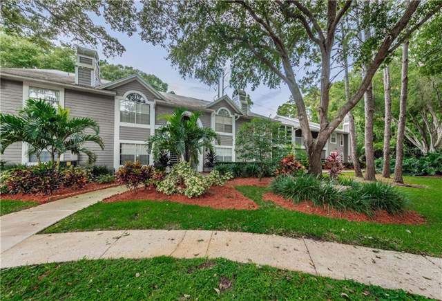 2101 Fox Chase Boulevard #104, Palm Harbor, FL 34683 (MLS #U8056659) :: Cartwright Realty
