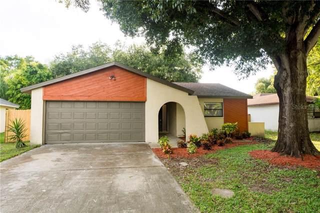 833 Green Valley Road, Palm Harbor, FL 34683 (MLS #U8056660) :: Lovitch Realty Group, LLC