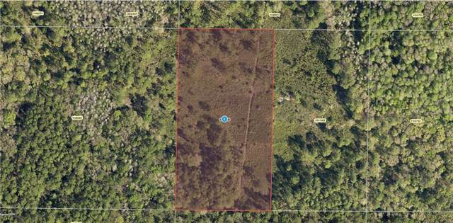 Water Road, Clermont, FL 34714 (MLS #U8056702) :: Bridge Realty Group