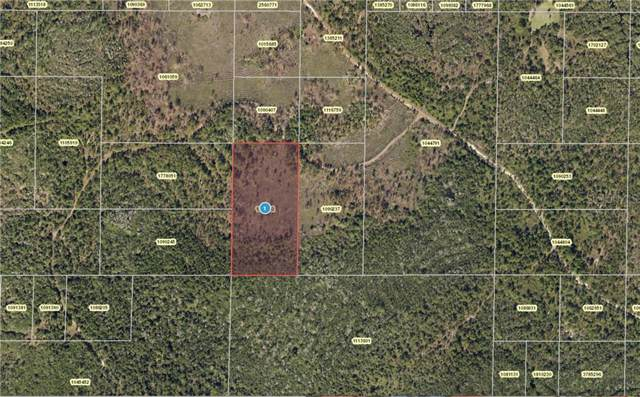 Salyers Road, Clermont, FL 34714 (MLS #U8056707) :: Bridge Realty Group