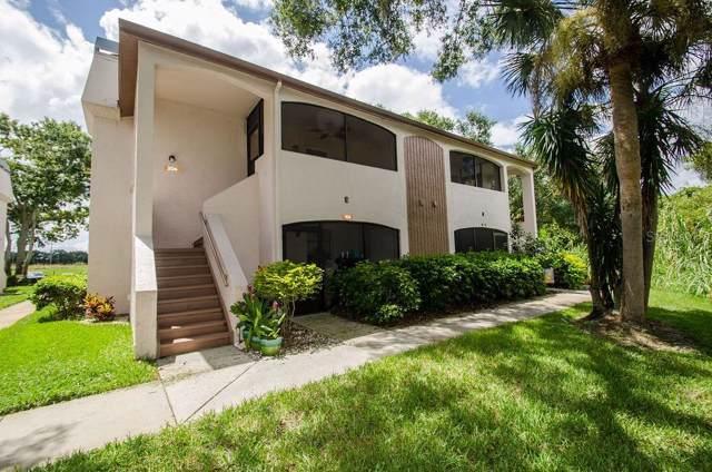 2969 Bonaventure Circle #204, Palm Harbor, FL 34684 (MLS #U8056754) :: Lovitch Realty Group, LLC